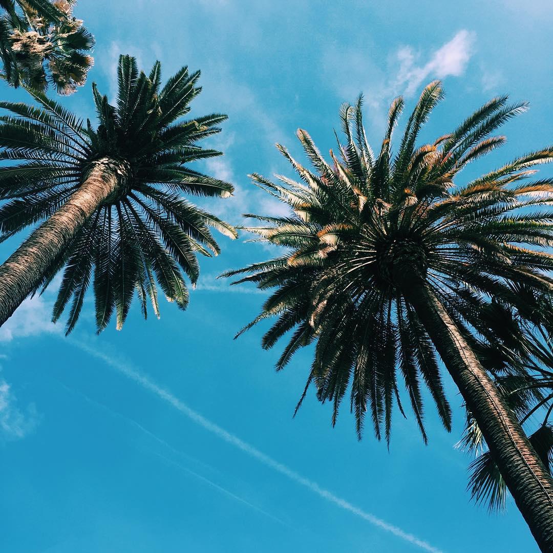 #valencia = L.A ☀️